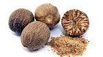 Nutmeg - myristic fragrans - India